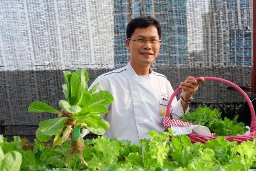 Novotel Bangkok Ploenchit Sukhumvit (Thailand)_garden 3.JPG