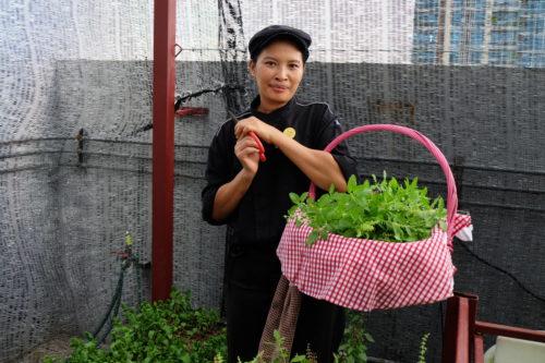 Novotel Bangkok Ploenchit Sukhumvit (Thailand)_garden 4.JPG