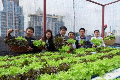 Novotel Bangkok Ploenchit Sukhumvit (Thailand)_garden 2.JPG