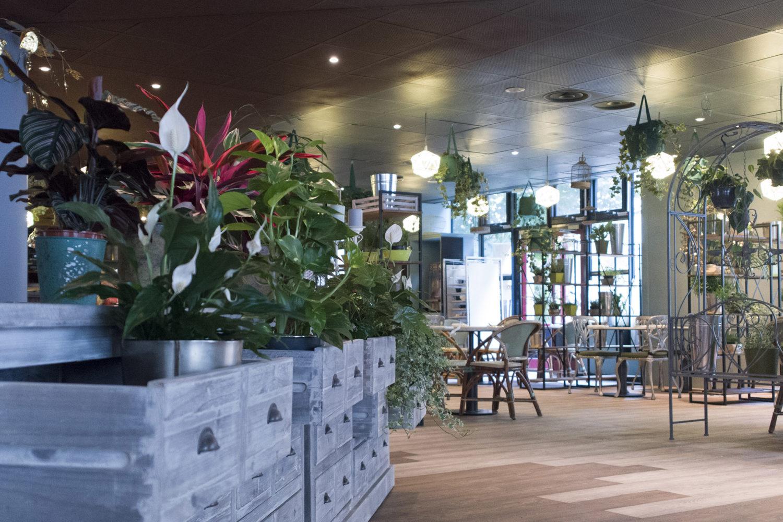 L'hôtel ibis Paris Bastille Opéra dévoile de nouveaux espaces de vie signés Stella Cadente       ...