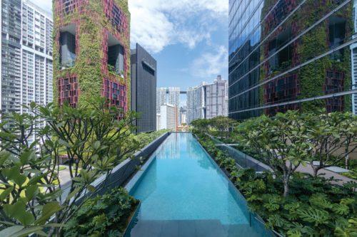 Sofitel Singapore City Centre - Pool_Kawana Masano.jpg